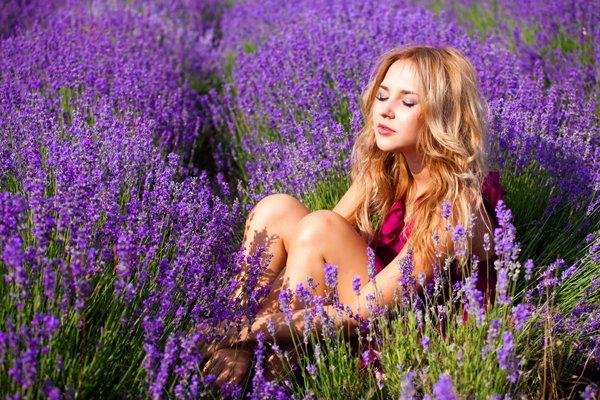 Khu du lịch Lavender Đà Lạt