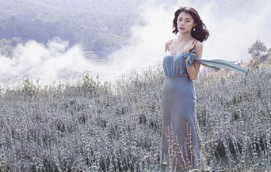 Vườn hoa Lavender Đà Lạt ở đâu